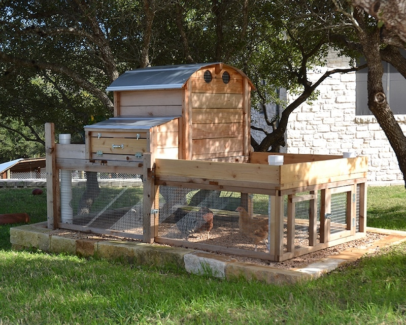 Round-Top Backyard Chicken Coop™