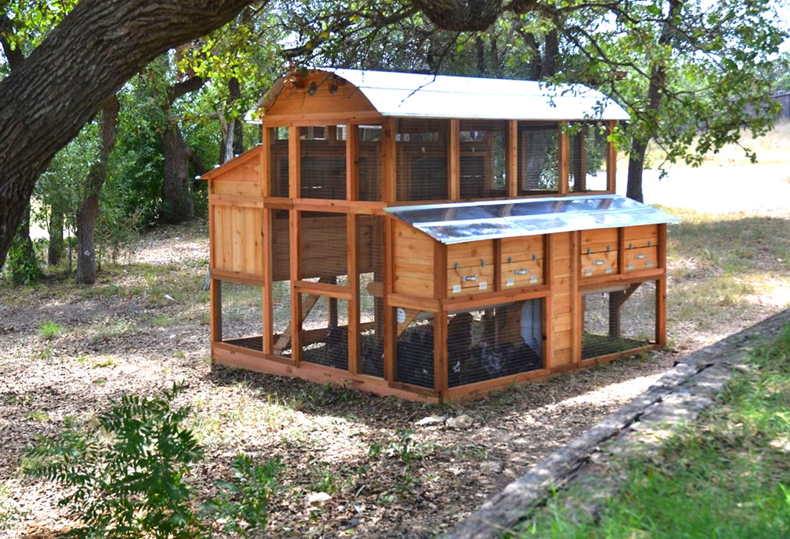 Best Backyard Chicken Coop Top Walk In Chicken Coop Coop