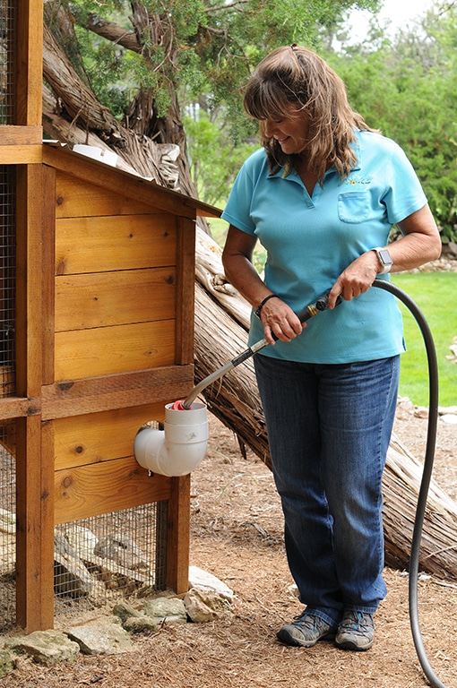Waterer fill is accessed from outside the coop.