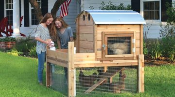 Round-Top Backyard Chicken Coops are Handmade in the USA (shown with optional waterer and feeder)