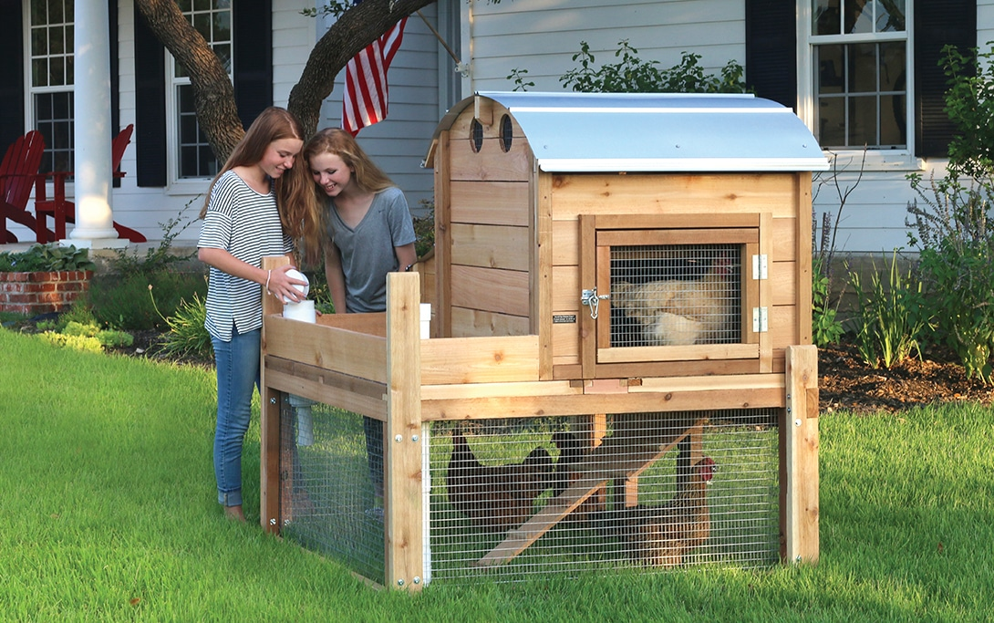 Base Model Round-Top Backyard Coop™ | Urban Coop Company ...