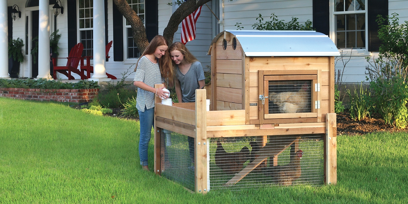 Round-Top Backyard Chicken Coops are Handmade in the USA
