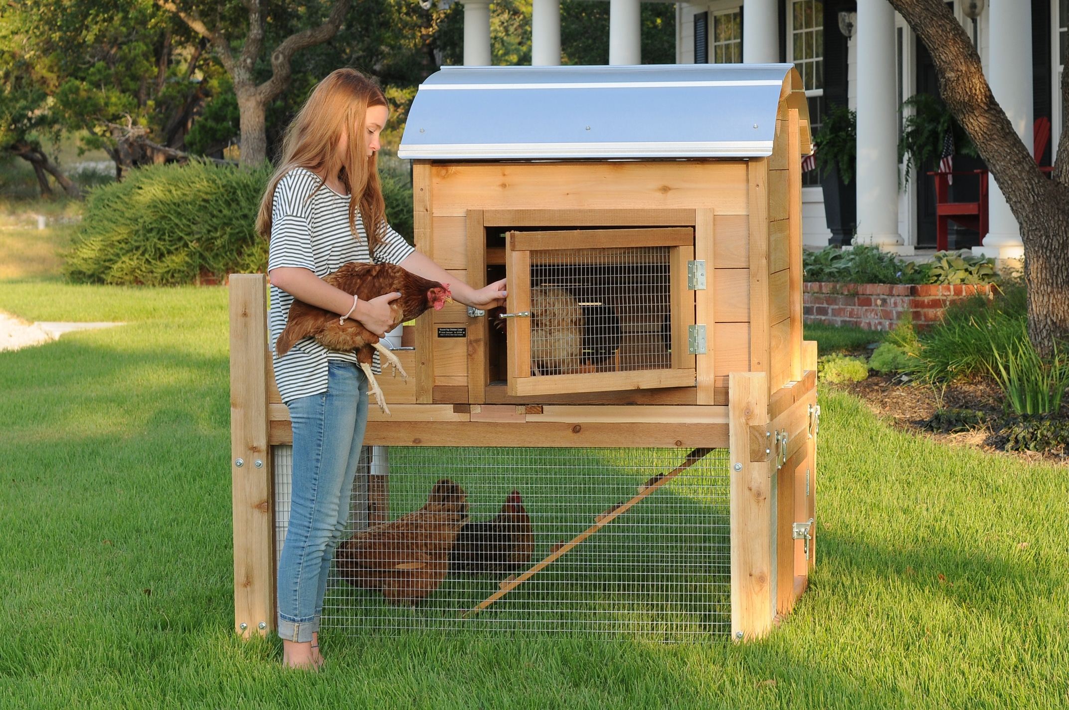 Best Backyard Chicken Coop 28 Images 176 Best Images