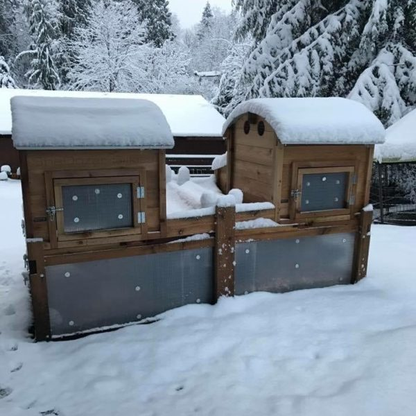 Round-Top Backyard Coop with Optional Storm Panels